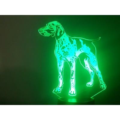 LAMPE 3D - BRAQUE -